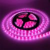 Лента LED SMD3528 IP33 9,6Вт/м 12В фиолетовый (120 диодов/м)