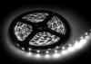 Лента LED SMD2835 IP33 4.8Вт/м 12В холодный белый (60 диодов/м) ЭКО